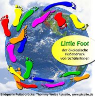 Little-Foot_Logo-Homepage(v2.0).jpg